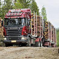 Аренда лесовоза Scania